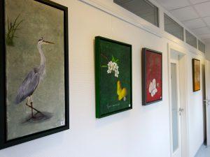 Ölbilder und Acrylbilder im Gang der Praxis Jerrentrup